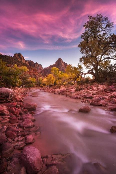 A pink sunset at Zion National Park. Photo by Scotty Perkins. Tweeted by the US Department of the Interior, 2/21/15.