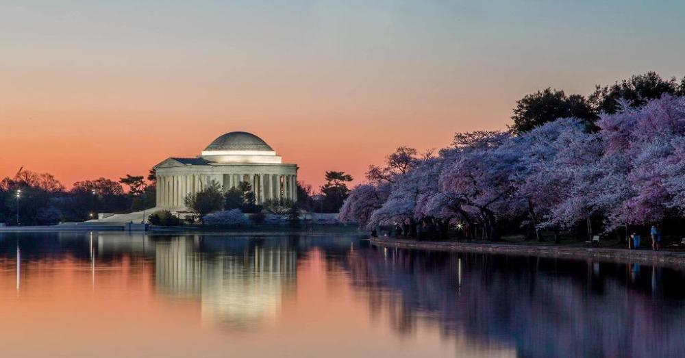 The Jefferson Memorial in twilight, with the Capitol Mall awash in cherry blossoms. Photo by Andrew Geraci. Tweeted by the US Department of the Interior, 4/13/15.