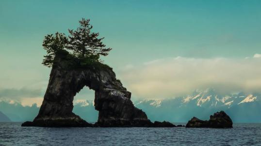 Kenai Fjords National Park. Tweeted by the US Department of the Interior, 7/22/15.