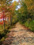 Rachel Carson NWR – Fall