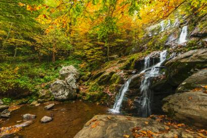 Fall color in Virginia's Shenandoah National Park. Tweeted by the US Department of the Interior, 10/19/15.