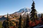 Mt Rainier NP 31
