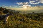 Shenandoah NP 37 – Spring