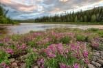 Beaver Creek WSR 02
