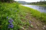 Beaver Creek WSR 06