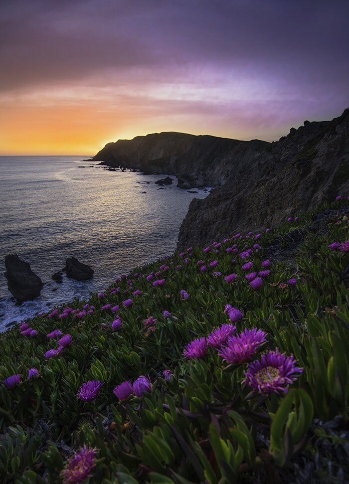 Point Reyes NS - Sunset