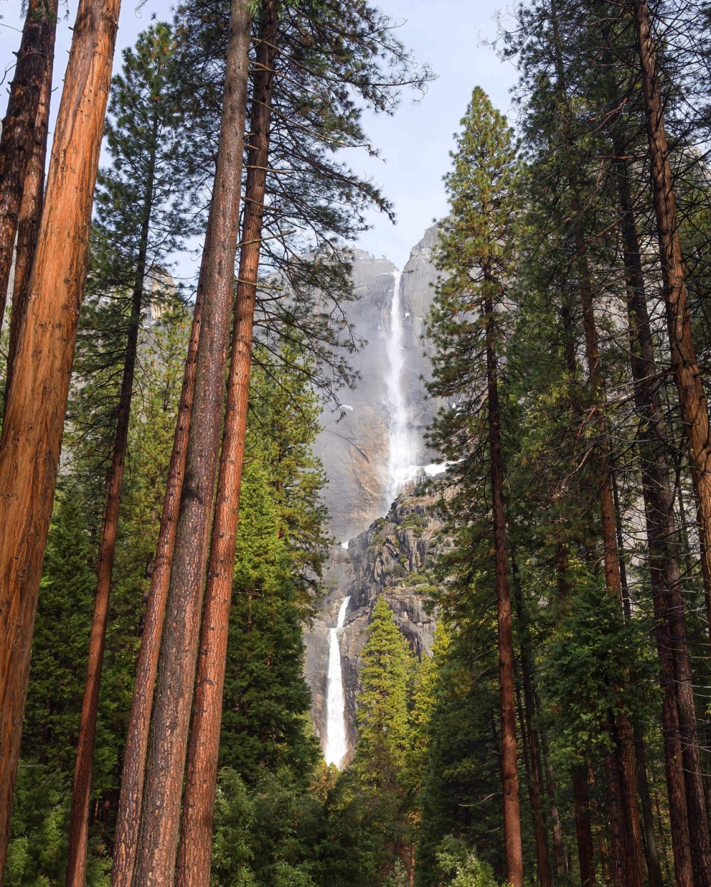 Yosemite Falls at Yosemite National Park in California. Cascading more than 2,400 feet above Yosemite Valley, it's the tallest waterfall in North America. Photo courtesy of Tiffany Nguyen. Posted on Tumblr by the US Department of the Interior, 4/29/16.