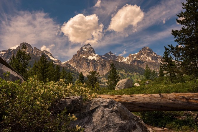 Wyoming's Grand Teton National Park. Photo by Michelle Olmstead. Tweeted by the US Department of the Interior, 6/13/16.
