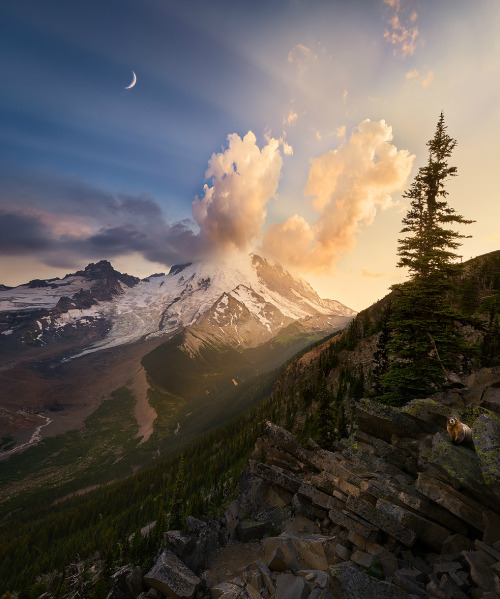 Sunset ignites the clouds around Mount Rainier's summit in Mount Rainier National Park in Washington. To see this, hike up to Glacier Overlook and enjoy wonderful views of forests, meadows, streams, mountains and wildlife. There's so much to experience, you might even miss the marmots. Can you spot the one in this picture? Photo by Howard Snyder. Posted on Tumblr by the US Department of the Interior, 5/22/16.
