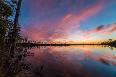 Everglades National Park in Florida is a subtle place where earth, water and sky blend in a low green landscape – where mere inches of elevation produce distinct changes in vegetation and a great wealth of birds and other unique wildlife find refuge. One of the most environmentally significant regions in the world, this special park can also impress with its sublime beauty. Sunset photo by Aryeh Nirenberg. Posted on Tumblr by the US Department of the Interior, 8/23/16.