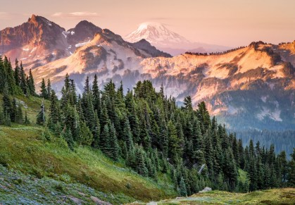 Sunrise View of Mount Adams from Mount Rainier. It's one of many views in Washington's Mountain Rainier National Park that'll stop you in your tracks. Photo by Rip Rippey, from the Department of the Interior blog.
