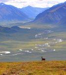 gates-of-the-arctic-np-34