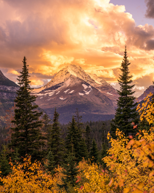 "Fall has arrived at Glacier National Park, and it's stunning. Crushing clouds and rain greeted Nate Luebbe at Glacier, but as he crested Logan Pass he was treated to one of the most spectacular alpenglow sunsets we've seen. ""The sun shot golden fingers between jagged peaks and illuminated the clouds from below, and I couldn't help but admire the timing. Montana was welcoming me home."" Photo by Nate Luebbe. Posted on Tumblr by the US Department of the Interior, 10/8/16."
