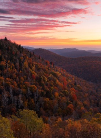 The perfect fall scene as seen from the Blue Ridge Parkway. Photo by Philip Varney. Tweeted by the US Department of the Interior, 11/17/16.