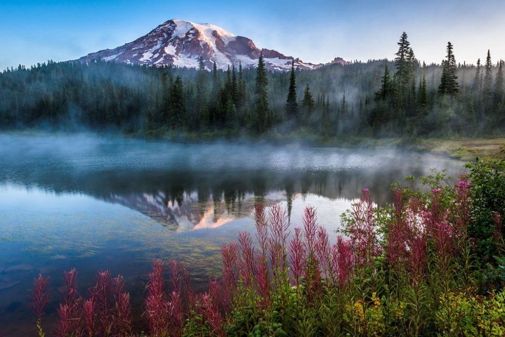 Reflection Lake, Mount Rainier National Park. Photo by Mike Walker. Tweeted by the US Department of the Interior, 10/21/16