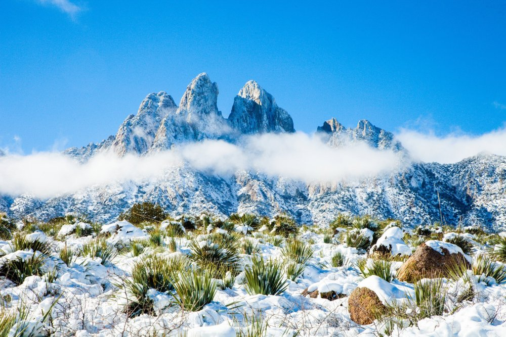 Wake up to stunning winter sights with year-round camping at New Mexico's Organ Mountains in the Desert Peaks National Monument. Tweeted by the US Department of the Interior, 1/11/17.