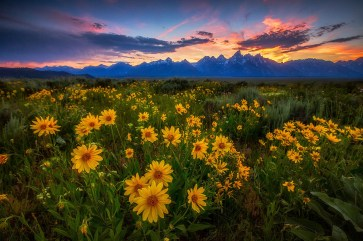 Wyoming's Grand Teton National Park. Photo by Manish Mamtan, Posted on Tumblr by the US Department of the Interior, 6/21/17.