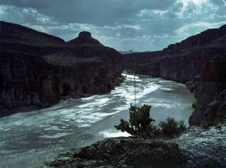 Big Bend NP 07