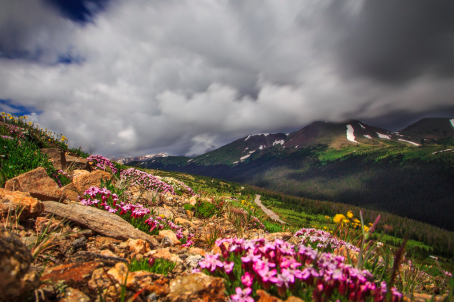 A summer storm rolls through Rocky Mountain National Park creating this dramatic pic by Stefanie Obkirchner. Tweeted by the US Department of the Interior, 7/23/15.
