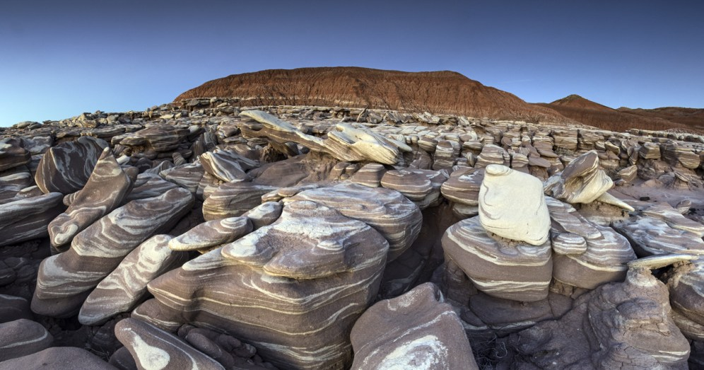 Petrified Forest NP 37