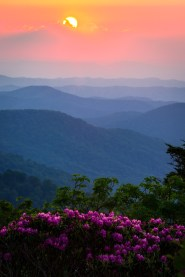 Incredible sunsets are one of the many rewards of hiking along the Appalachian Trail, a national scenic trail that stretches from Georgia to Maine. Native to the Appalachian Mountains, rhododendrons bloom in this gorgeous photo that was taken along the trail near the Roan Highlands on the border of Tennessee and North Carolina. With so many great vistas to choose from, this scenic area is a favorite with day hikers and backpackers alike. Photo courtesy of Serge Skiba. Posted on Tumblr by the US Department of the Interior, 7/28/16.