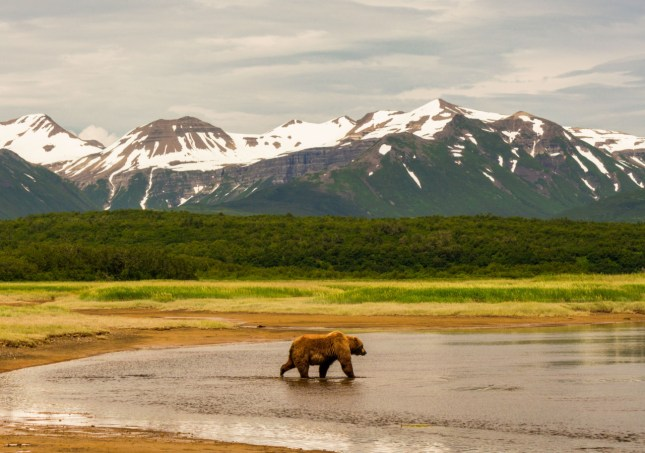 Photo of Katmai National Park and Preserve in Alaska by Saurin Munshaw. Posted on Tumblr by the US Department of the Interior, 9/5/16.