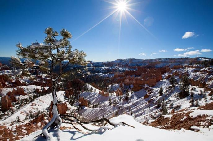 Utah's Bryce Canyon National Park. Photo by National Park Service. Tweeted by the US Department of the Interior, 12/17/16.