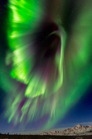 A green aurora borealis over Denali National Park. Photo by Carl Johnson. Tweeted by the US Department of the Interior, 3/17/17.