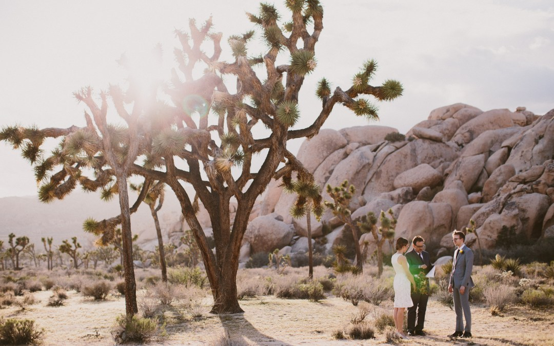 Intimate Joshua Tree Elopement featured on Black Sheep Bride Today! | Lauren & Andrew