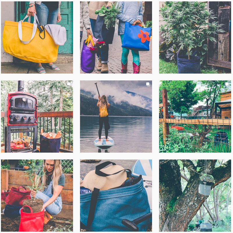 Green Bag Instagram