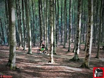eremua trail y btt pirineonavarro eugi (75)
