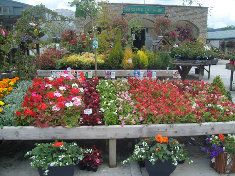 Northern Lights Garden Center