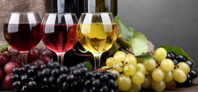 Как выбирать вино на Кипре?