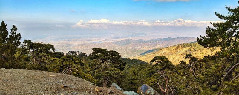 Экскурсия в Троодос гора Олимп