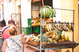 Typical cuban dishes you must try while in Cuba