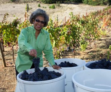 Theopolis Vineyards: California's 18-Year-Old Black Woman-Owned Winery