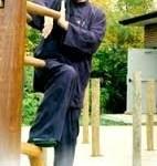 Como estudar kung fu Moy Yat
