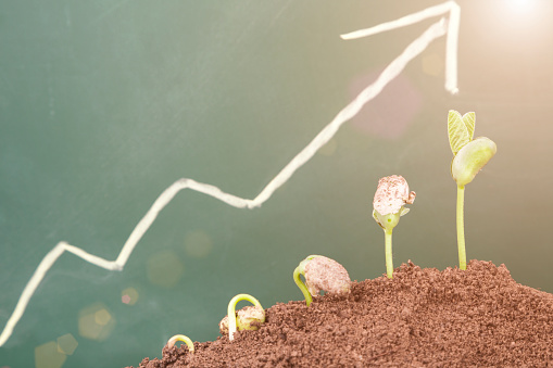 Global Market: Renewable energy and natural gas dominate growth
