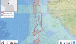 Africa Oil & Gas: TGS to undertake new 3D multi-client survey off West Africa