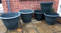 Large Planters for sale in UK | 70 used Large Planters