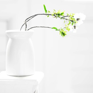 High-key : improvisation d'une composition florale