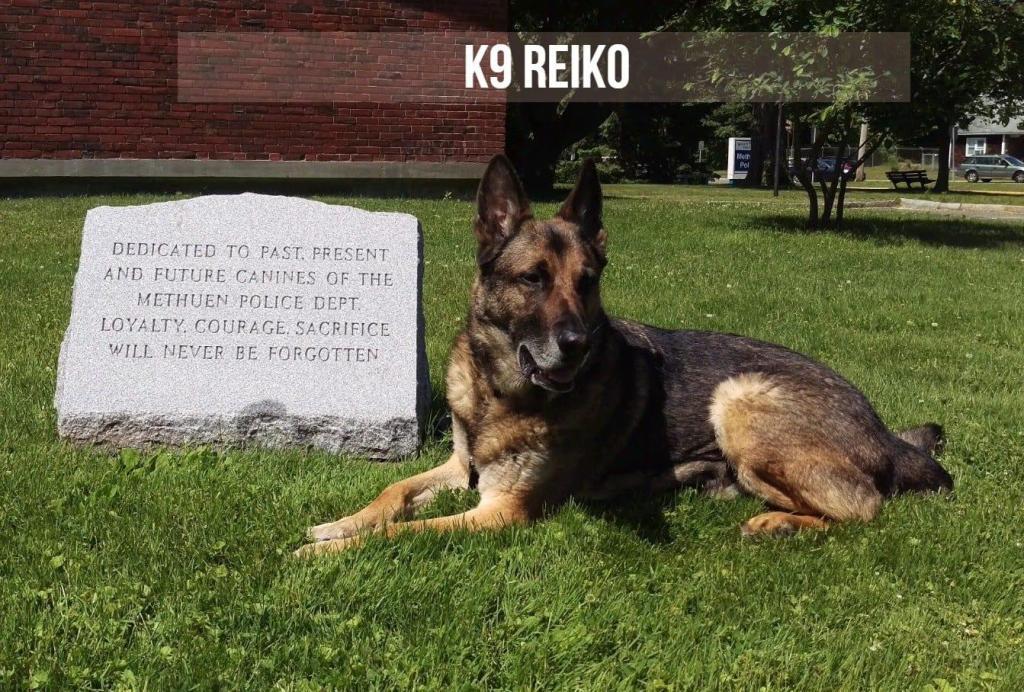 Police K9 Reiko