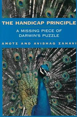 Image result for handicap principle