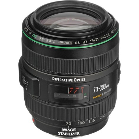 Canon EF 70-300mm F4.5-5.6 DO L