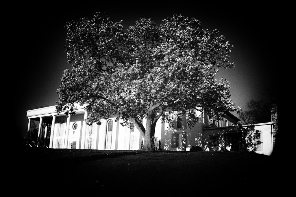 The same shot as above processed with a PInhole Camera preset from Nik Silver Efx Pro.