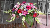#MPCASK004– $285.00 — Pink Oriental Lilies, Hot Pink Gerberas, Red Gerberas, Pink Carnations, Yellow Snap Dragons, Lavender Blue Hydrangea , Pink Carnations, White Monte Casinos, Purple Statice, Hypercums. ~ Approximate size: 18H x 40W ~