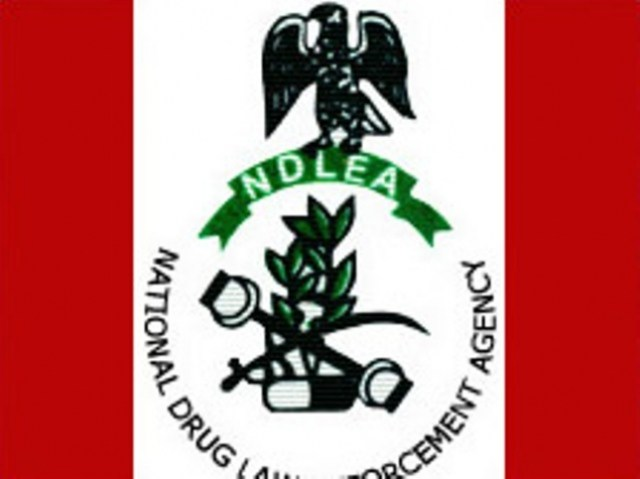 NDLEA-Logo Igbo Man Arrested At Lagos Airport With Over 200g Of Cocaine In His Anus