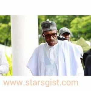 buhari1 Buhari advised against appointing Fashola as Minister