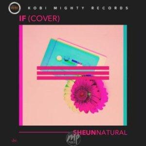 """IF-COVER-SHEUNNATURAL-1-300x300 MP3: Sheun Natural - """"If (Cover)"""""""