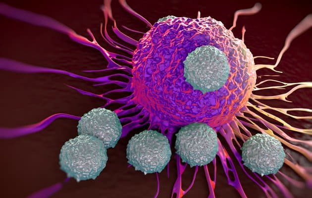 T cells attacking blood cancer
